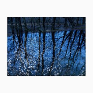 Seascapes 7, Ellie Davies, Photography, 2020