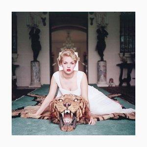 Schöne und das Biest, schlanke Aarons, 20. Jahrhundert, Tiger Teppich