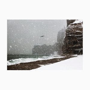 La Mouette, Christophe Jacrot, Seaside, Reisefotografie