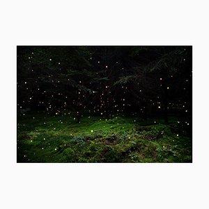 Stars 5, Ellie Davies, Britische Fotografie