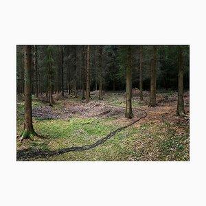 One Knit, Pearl One 3, Ellie Davies, Landscape, 2011