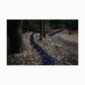 One Knit, Pearl One 1, Ellie Davies, Landscape, 2011