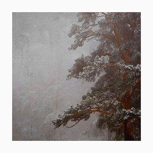 Rosa Basurto, Blanco 5, Landscape Photograph