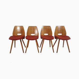 Esszimmerstühle von Tatra, 1960er, Set of 4