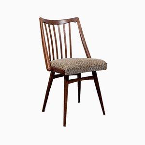 Vintage Expo 58 Stühle im Stil von Antonín Šuman von UP Závody, 4er Set