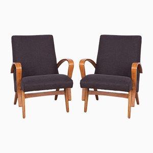 Tschechische Sessel, 1960er, 2er Set