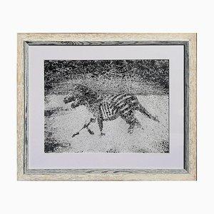 Luca Cioffi, Zebras, Malerei, 2016
