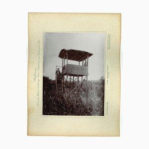 Unknown, Java, High Stand in Ploembon, Original Vintage Photo, 1893
