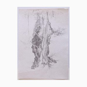 André Roland Brudieux, Tree, Pencil Drawing, 1970s
