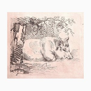 Unknown, The Pig, Lithograph on Paper, 1880s