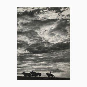 Wild Horses by Erwing Galloway for Revue Verve