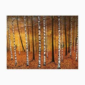 Goldene Birken, Große Zeitgenössische Landschaftsmalerei, 2020