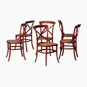 Sedie da pranzo vintage in legno, set di 6