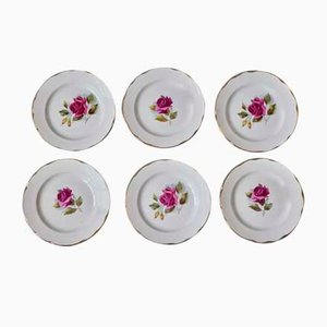 Bohemian French Ceramic Plates from Gien, 1950s, Set of 6
