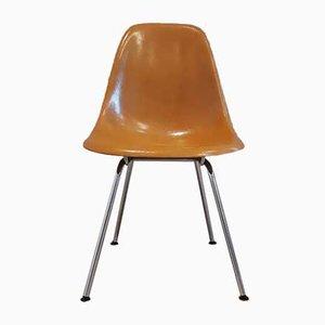 Chaises de Salon DSX par Charles & Ray Eames pour Herman Miller & Fehlbaum Production, 1970s, Set de 6