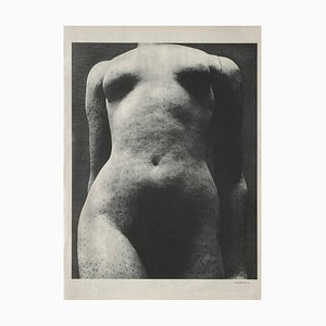 Aristide Maillols Women by Erwin Blumenfeld by Revue Verve