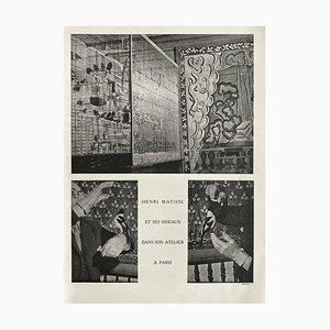 Henri Matisses Aviary in His Studio by Brassaï by Revue Verve
