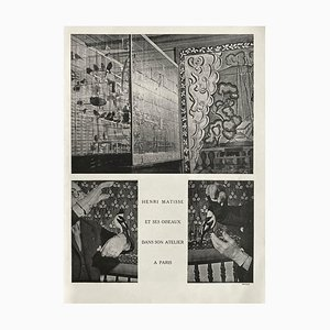 Henri Matisses Voliere in Sein Atelier von Brassaï von Revue Verve