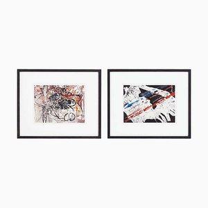 Pinturas de Jacques De Panafieu. Juego de 2