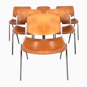 DSC 106 Bürostühle von Giancarlo Piretti für Castelli / Anonima Castelli, 1960er, 6er Set