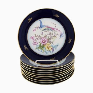 Rosenthal Porcelain Plates with Hand-Painted Flowers and Birds, Set of 10