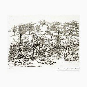 Leonardo Castellani - The Vineyard - Radierung - 1960