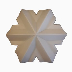 Vintage Wall or Ceiling Lamp with a White Snowflake Shade, 1970s