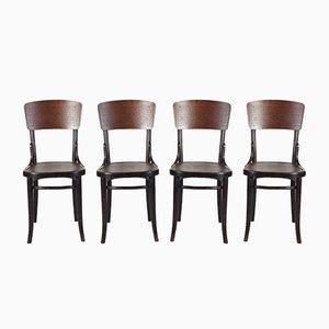 Antike Stühle von Thonet, 1920er, Set of 4