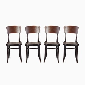 Antique Chairs from Thonet, 1920s, Set of 4