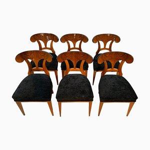 Biedermeier Schaufel Stühle mit Walnuss Furnier, Süddeutschland, 1860er, 6er Set