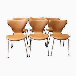 Chaises Série 7 Modèle 3107 par Arne Jacobsen et Fritz Hansen, Set de 6