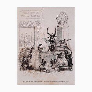 JJ Grandville, Privacy and Public Animal, Illustrations, 1868