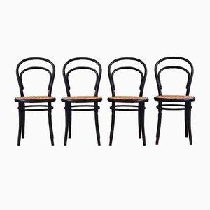No. 14 Dining Chairs by Michael Thonet for Ligna, 1960s, Set of 4
