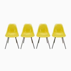 DSX Fiberglas & Metall Gelber Chrom Stuhl von Eames für Vitra, 1980er, 6er Set