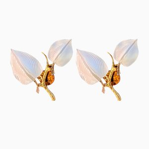 Sconces by Franco Luce, Set of 2