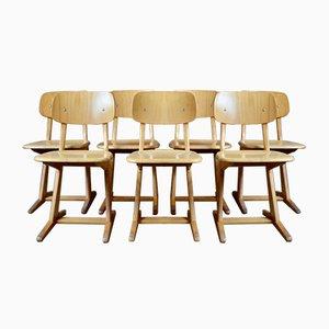 Stühle von Casala, 6er Set