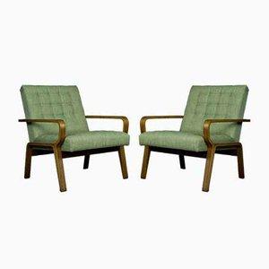 Czech Chairs by Ludvik Volák Drevopodnik Holesov, 1960s, Set of 2