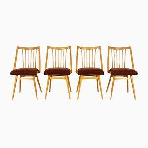 Esszimmerstühle von Antonín Šuman für Ton, 4er Set