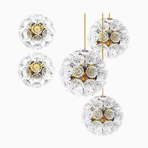 Starburst Flower Wall Lights and Chandeliers by Together, Set of 5