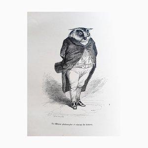 Jean Jacques Grandville - Privacy e animali pubblici - Illustrazioni - 1842