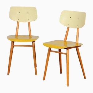 Vintage Holzstühle von Ton 1960er, 2er Set