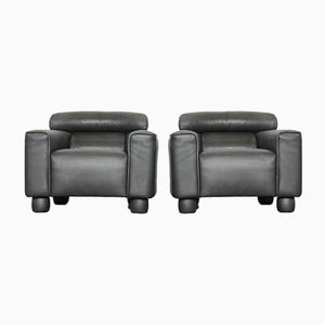 Leather Lounge Chairs from de Sede, Set of 2
