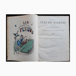 Les Fleurs Animées, Buch von Jean Jeacques Grandville, 1847