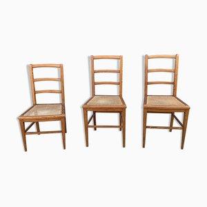 Sedie antiche, inizio XX secolo, set di 3
