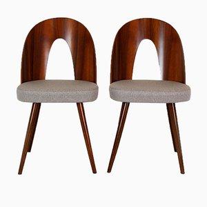 Esszimmerstühle von Antonin Suman für Mier, 1960er, 2er Set