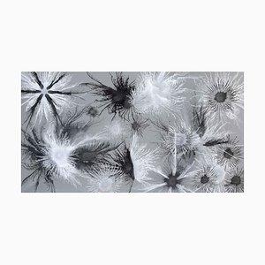 Exploflora Series Nr. 65, 2018