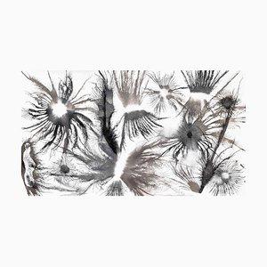Exploflora Series Nr.29, 2017