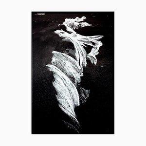Sirene, 2013