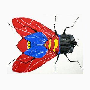 La Mouche à Superman, 2010