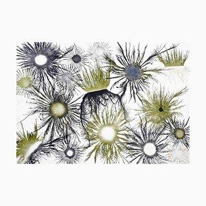 Exploflora Series No.87, 2020